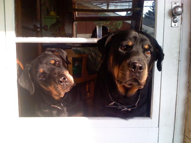 Charito & Kiko