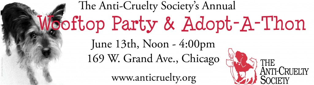 Anti-Cruelty Society's Wooftop Party